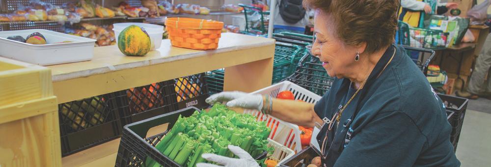 Healthy Foods Market